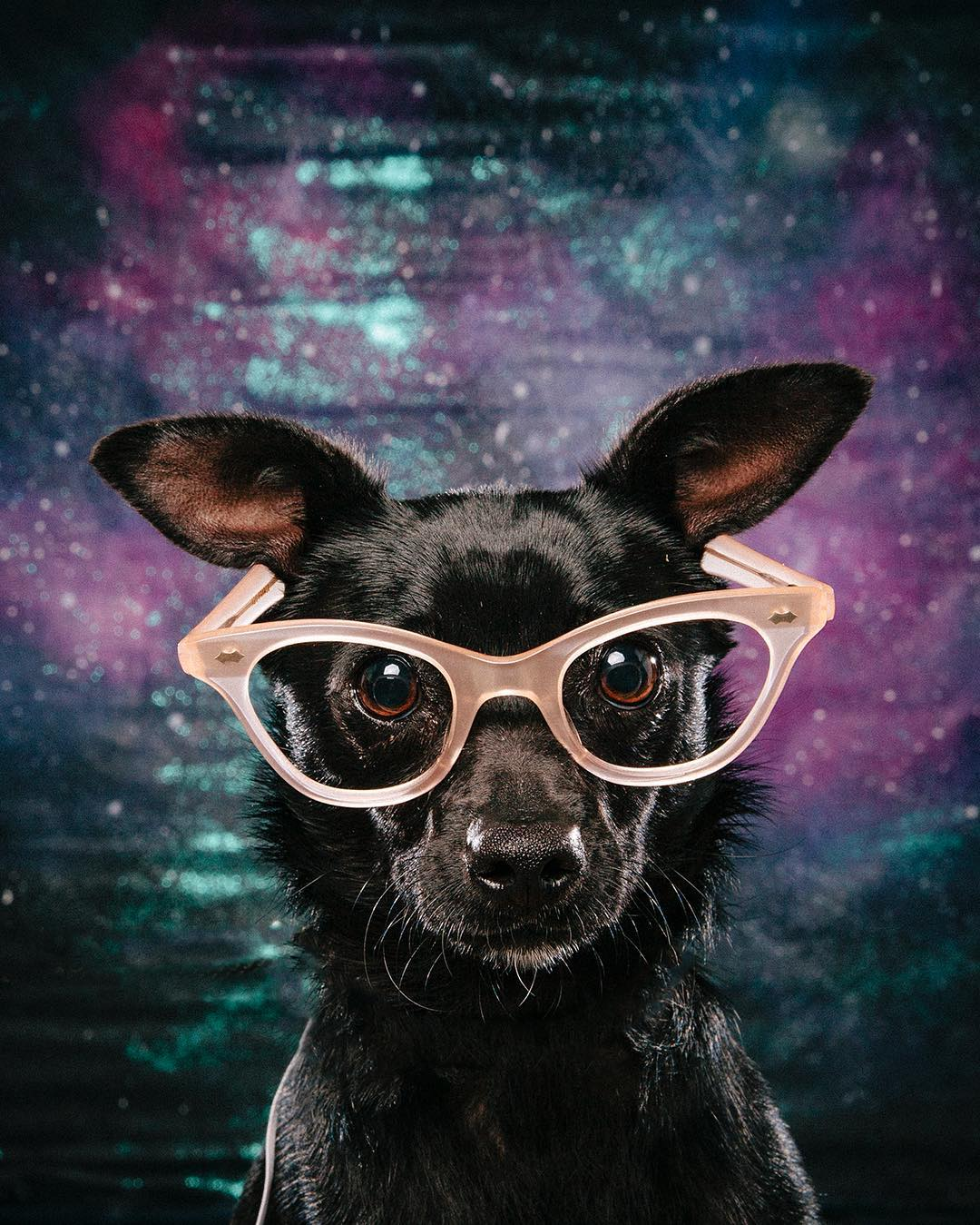 Arouty-Galaxy-Glamor-adopt-Mona-pastel-glasses