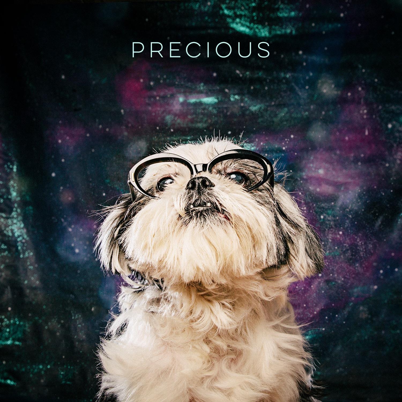 Arouty Galaxy Houston Rescue Dog Black Glasses